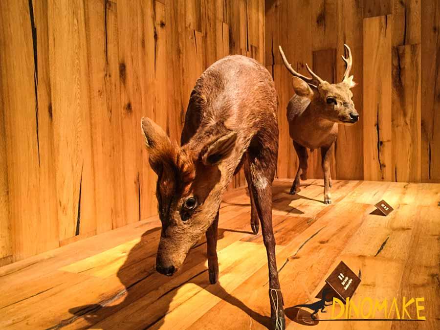 Animatronic Deer