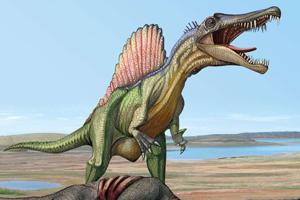 Spinosaurus image