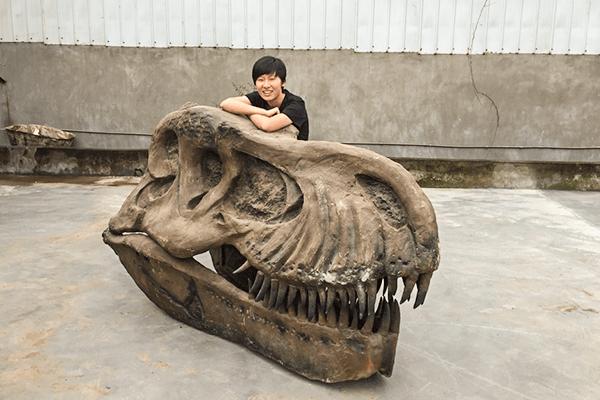 Dinosaur Head Skull