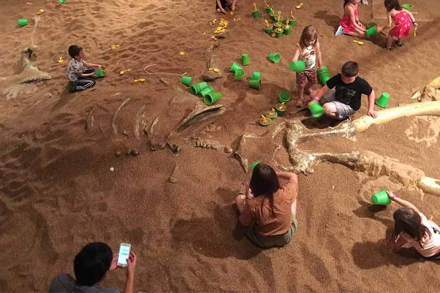 Dinosaur dig site
