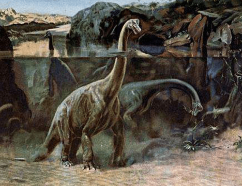 Can We Use DNA To Copy Dinosaurs?