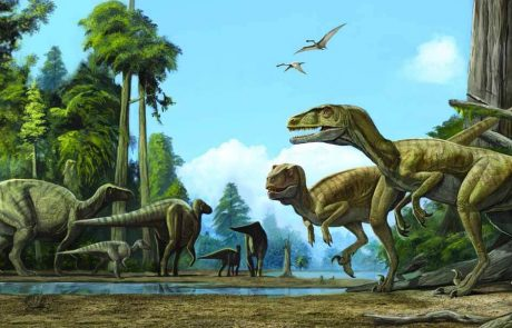 two predator dinosaur are hunting a group of hadrosaurs
