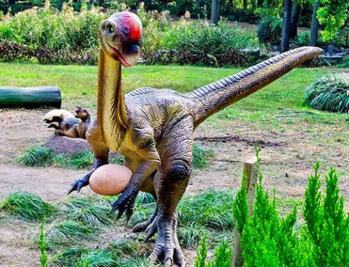 Animatronic Oviraptor