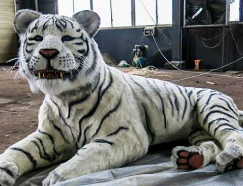 Animatronic White Tiger