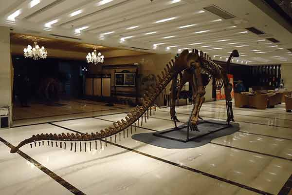 A dinosaur skeleton display in a hotel
