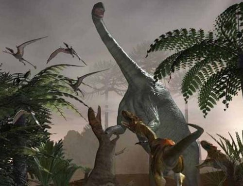 The huge dinosaur bigger than the blue whale