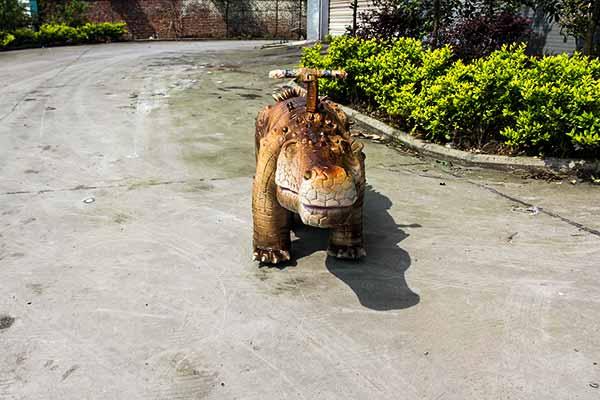 Crocodile Scooter