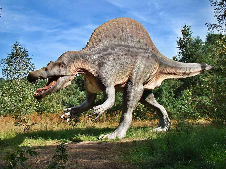 Fiberglass Spinosaurus in the park