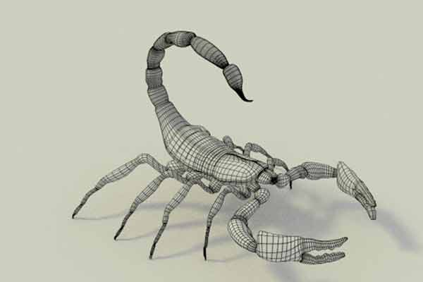 Design of animatronic scorpion