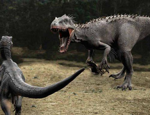 Animatronic T-rex Vs Velociraptor