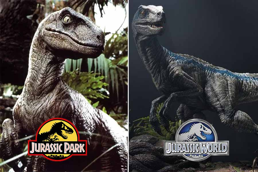Appearance of velociraptor in films