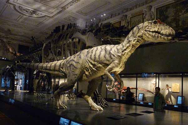 animatronic dinosaur in museum