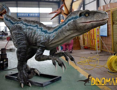 Animatronic Blue Velociraptor Statue