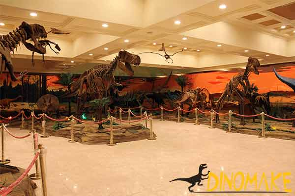 dinosaur fossil in museum
