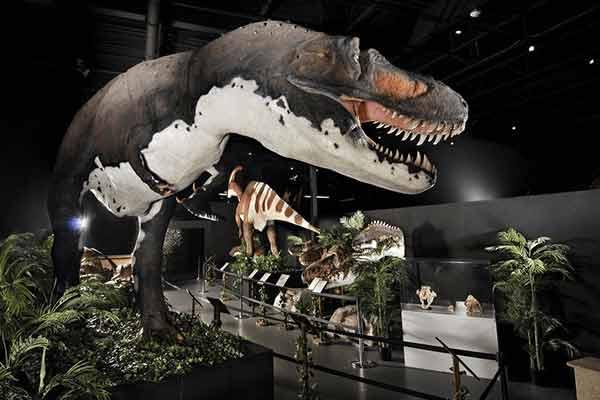 fiberglass-dinosaur-in-museum