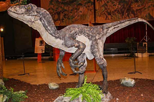raptor statue