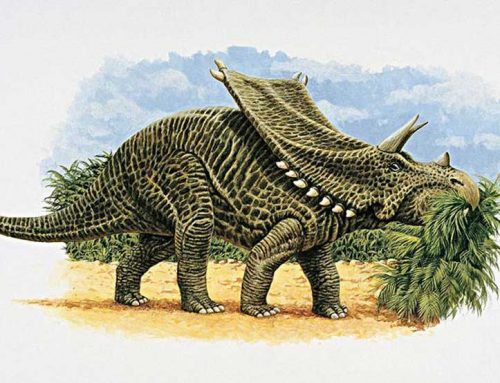The death of dinosaurs from food poisoning