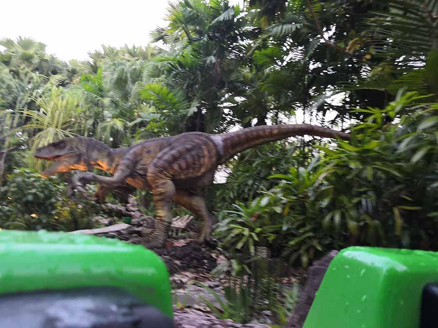velociraptor-animatronic
