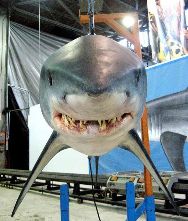 animatronic-shark-model