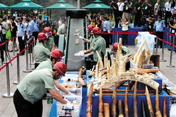 Destroying Ivory Products