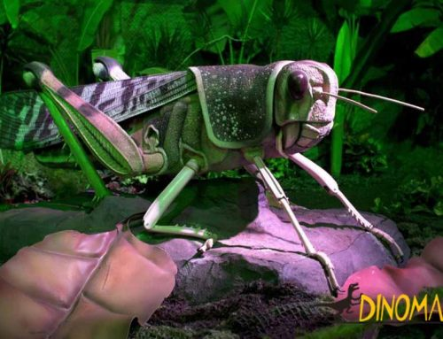 What can an animatronic insect factory help you?