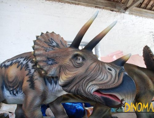 Large triceratops produced by Animatronic dinosaur factories
