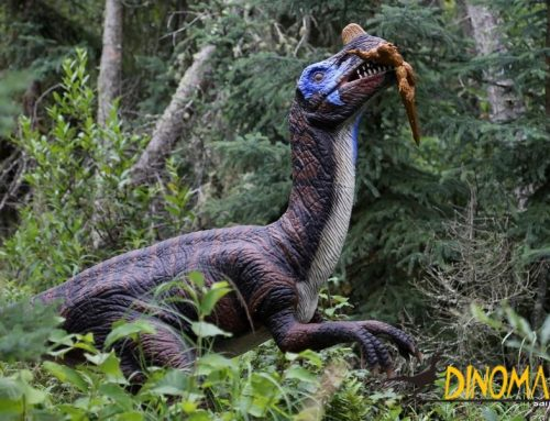 Animatronic Dinosaurs – Which is the Better