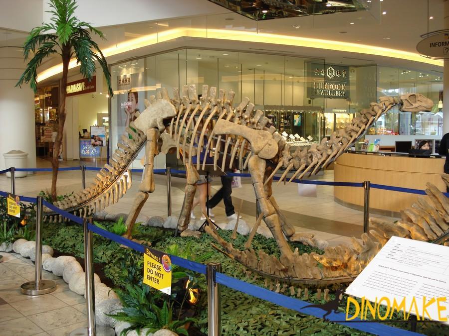 Animatronic Dinosaur Skeleton Exhibition of New York