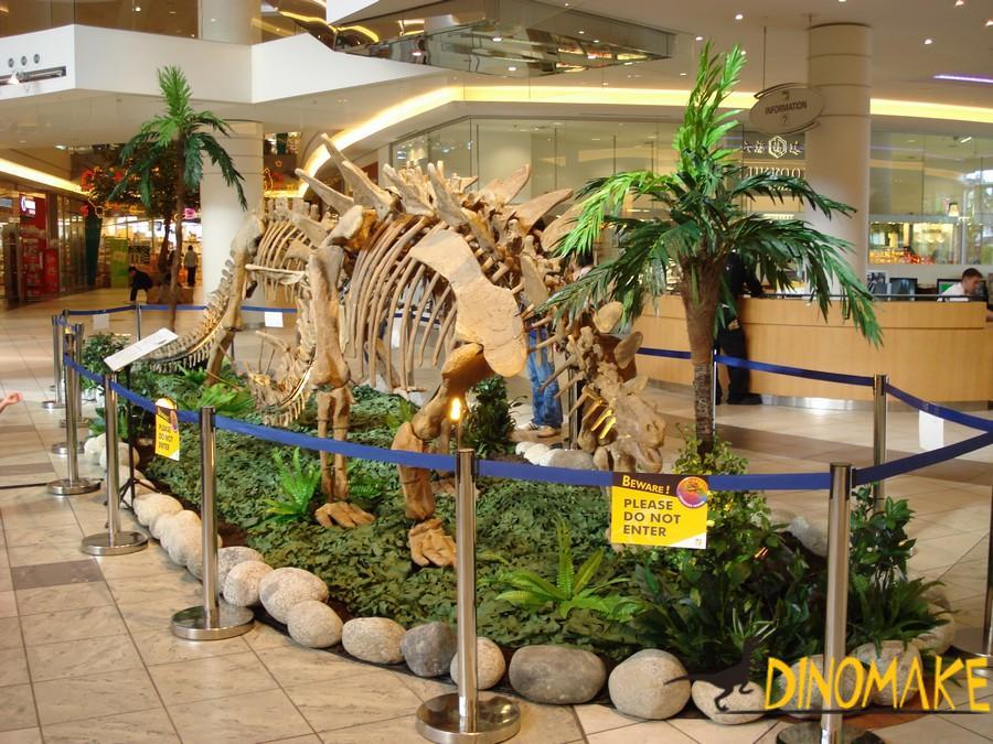 Animatronic dinosaur skeleton in shopping plaza