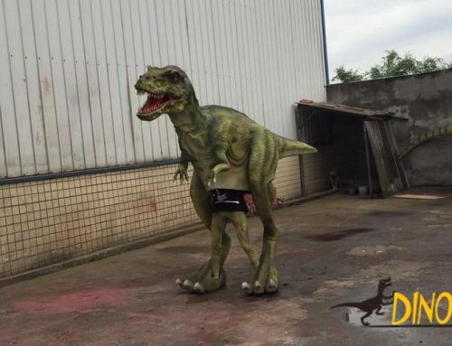Customized realistic dinosaur costume in China