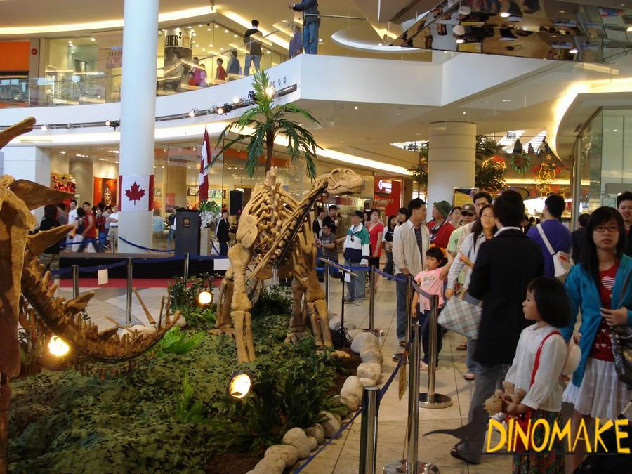Museum Quality Animatronic Dinosaur Skeleton Fossil Exhibition