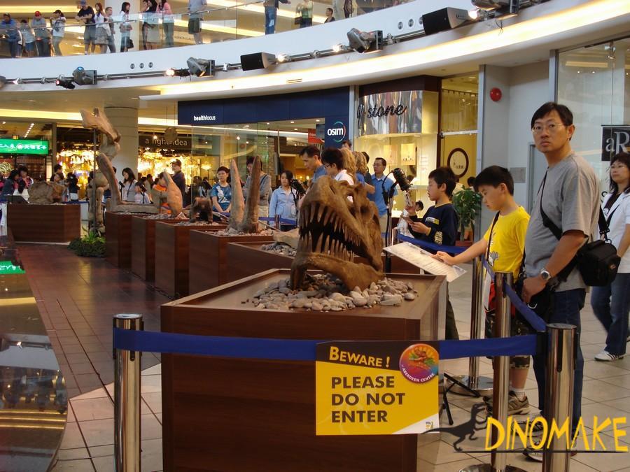Museum Quality Animatronic Dinosaur Skeleton Fossil