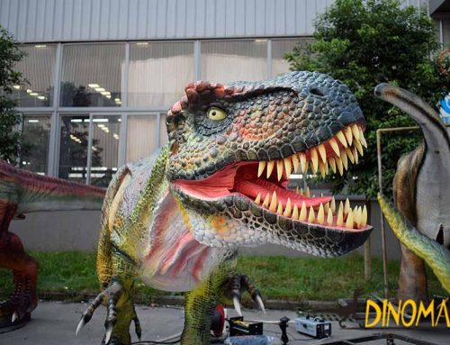 Animatronic Dinosaur Model Silica Gel Material and FRP Difference!