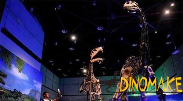 fossil-dinosaur