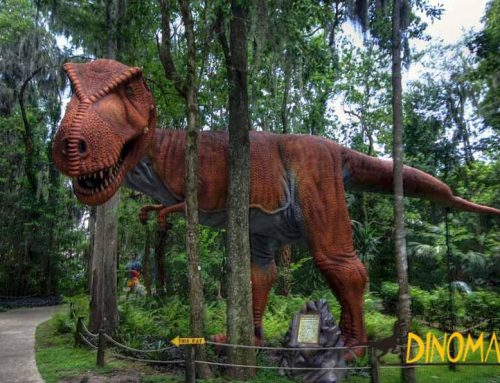 Where is it suitable for holding the animatronic dinosaur exhibition?