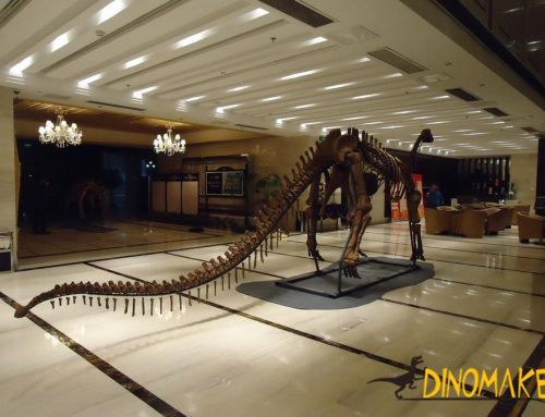 Animatronic Dinosaur Fossil Skeleton Exhibition