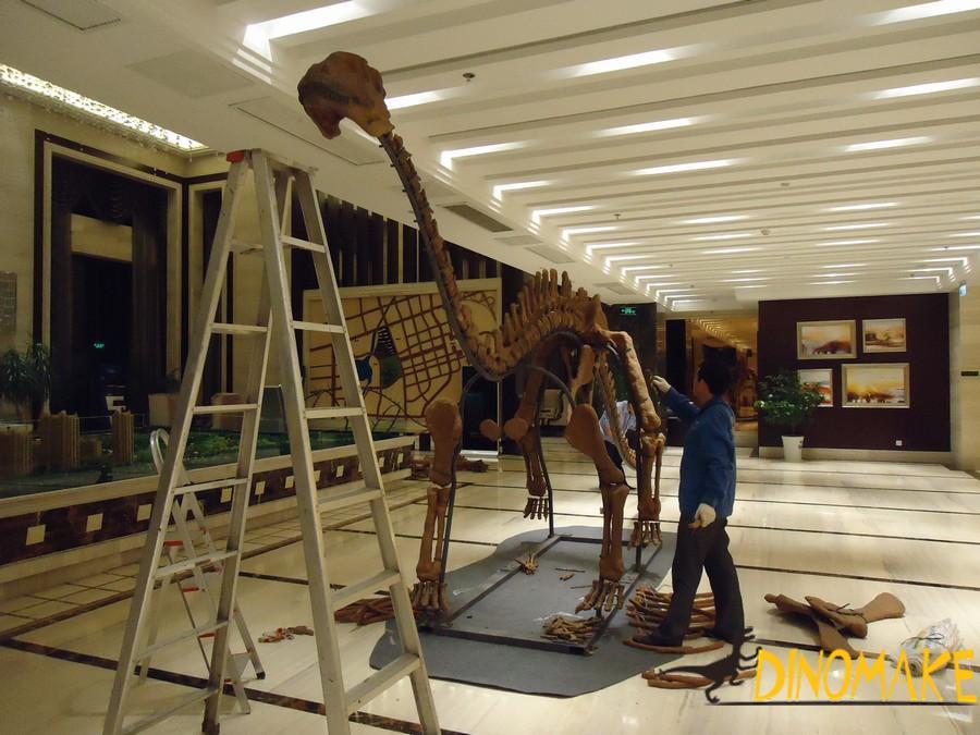 Animatronic Dinosaur Fossil Skeleton Exhibition