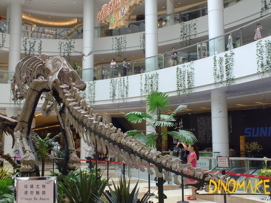 Animatronic Dinosaur Skeleton Exhibition