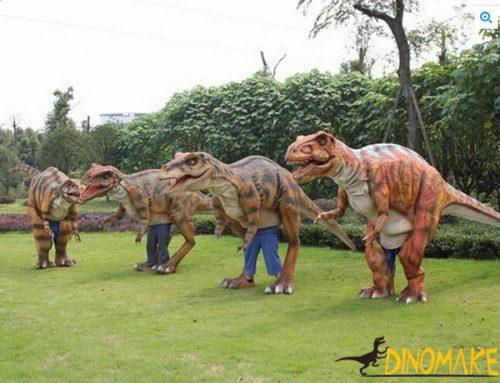 The finished product of dinosaur costume is used in adult performances.