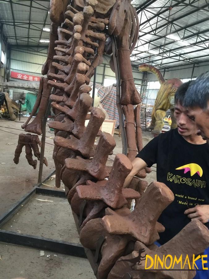 Large carnivorous dinosaur fossil was discovered in Sichuan