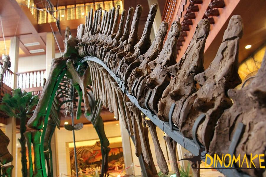 The Best life-size Animatronic dinosaur skeleton replica