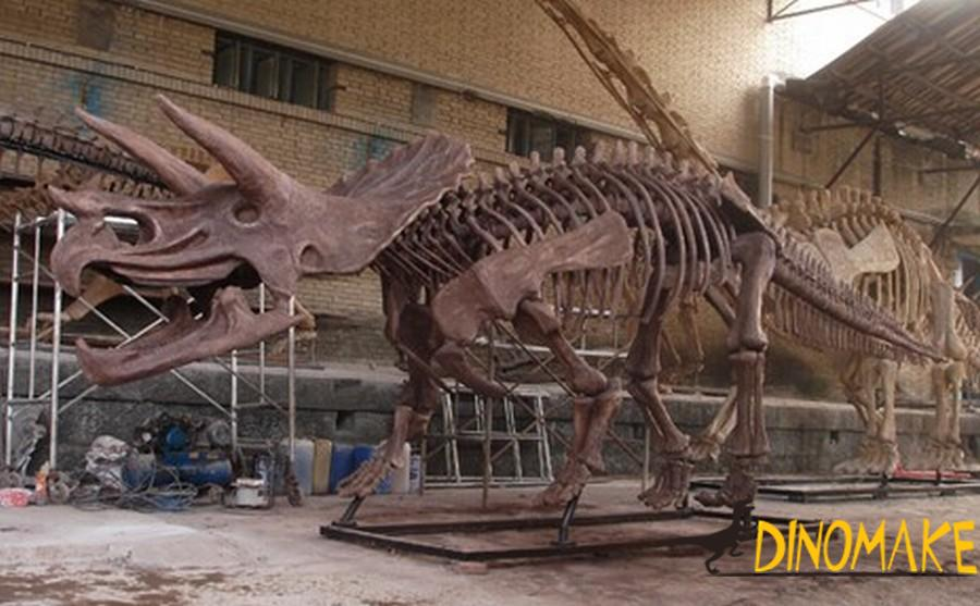 Theme park Animatronic dinosaur skeleton model