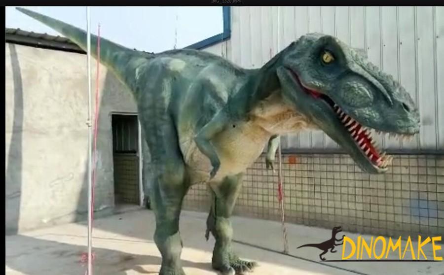 Walking with T-rex robotic dinosaur costume in hidden legs