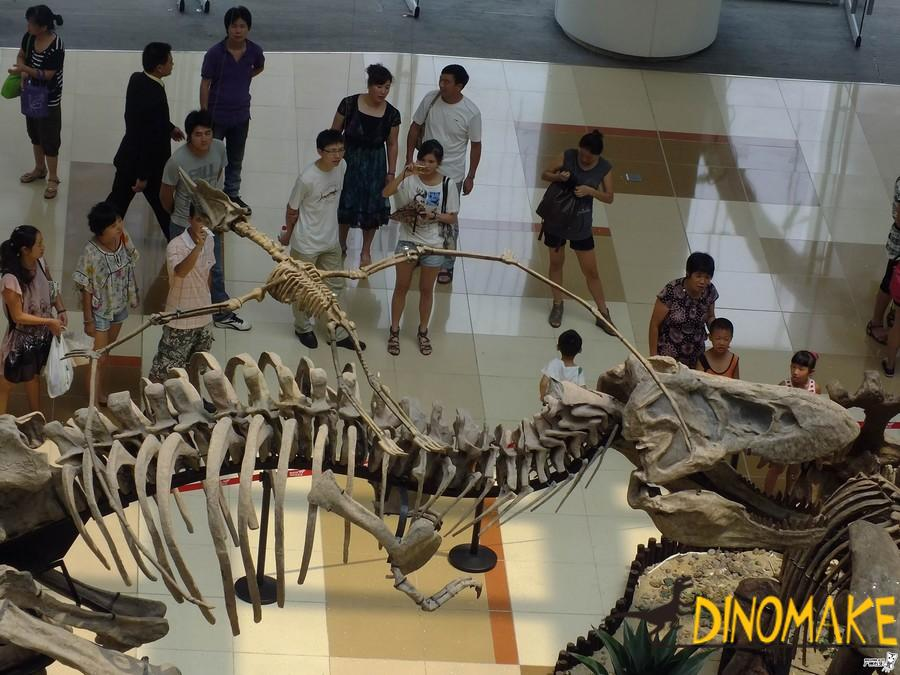 Animatronic dinosaur skeleton