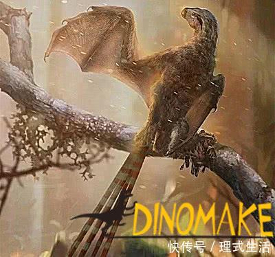 Dinosaurs with wings found in China