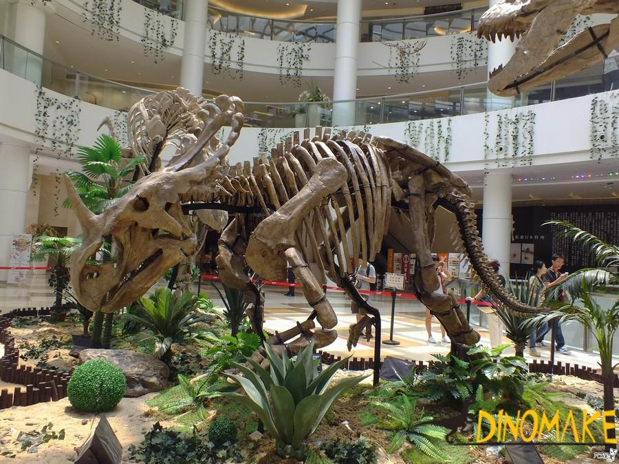 Features of animatronic dinosaur skeleton