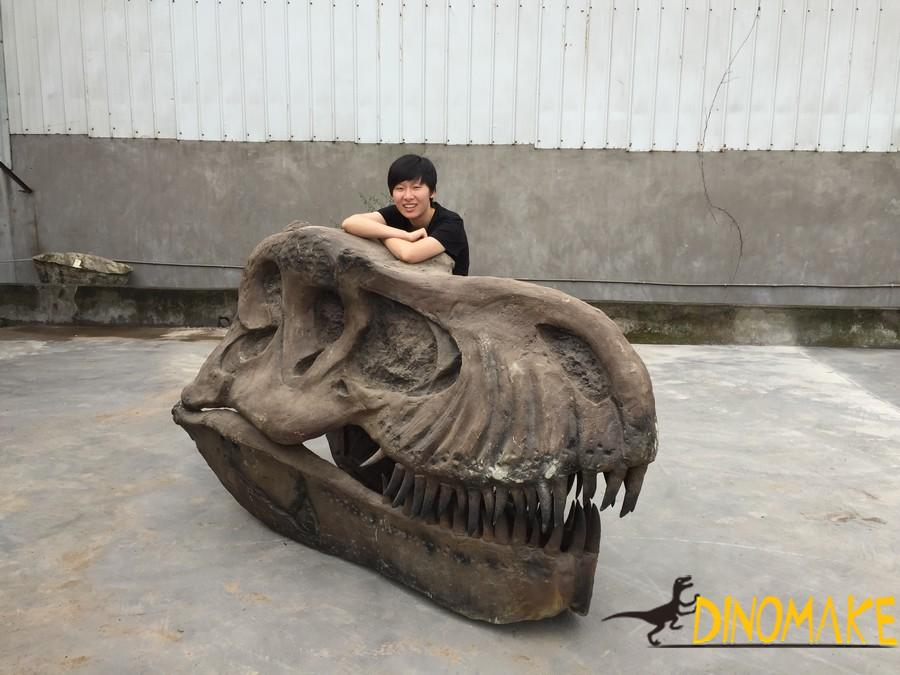 How is the dinosaur skeleton product made