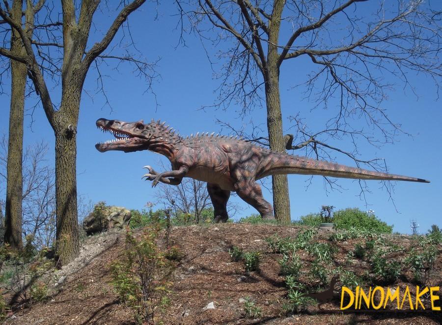 Morphological characteristics of dinosaur models
