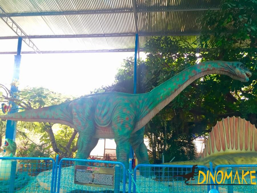 Show you different Animatronic dinosaurs product