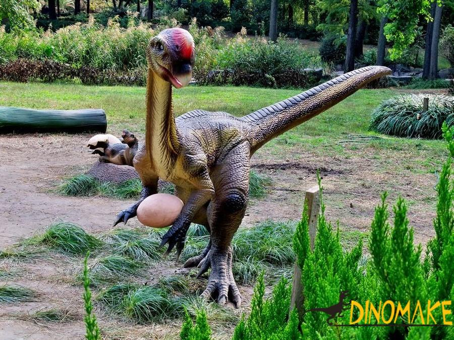 The animatronic dinosaur product company tells you what food dinosaur eat
